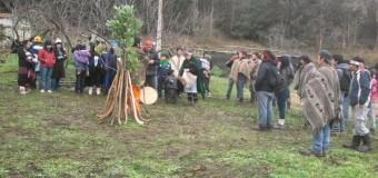 Carabineros de Chile golpea y toma detenidos a dos niños menores de edad en desalojo del fundo Lumaco