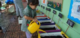 SBC de Tarapacá finaliza proyecto «Construyamos un Huerto» en el jardín infantil «Norteñito»