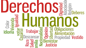 """PANEL:""""¿Cómo incorporar el derecho internacional de los DDHH en la nueva Constitución? """""""