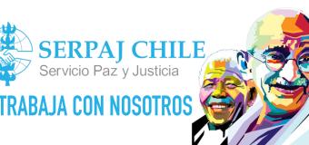 SERPAJ Chile requiere contratar Secretaria/o para programa en Viña del Mar